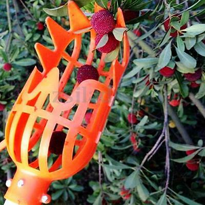 New Convenient Practical  Labor-saving Horticultural Fruit Picker Tool