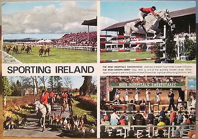 Irish Postcard SPORTING IRELAND Multiview Dublin Horse Show Sweeps Hinde 2/1302
