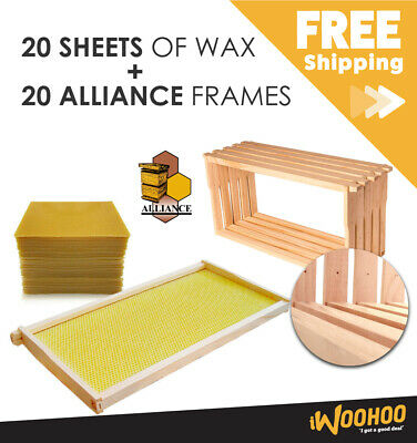 Beekeeping Combo 20 Pack Bees Wax Foundation & 20 Alliance Timber Frames