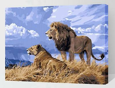 """DIY Paint By Number 16""""*20"""" Kit Cool Lions On Canvas With Nice Box"""