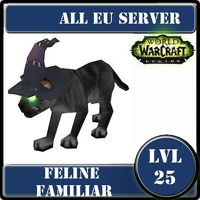 WoW pet EU---Feline familiar---LVL 25---Familier félin--