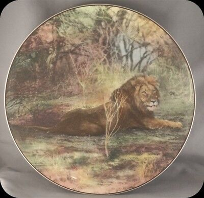 Royal Doulton African Series Lion D6359 African Game Reserve Collector Plate