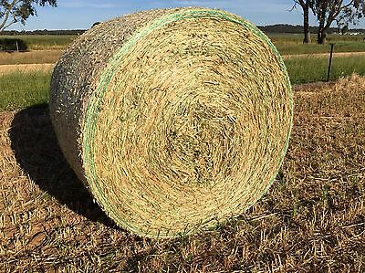 OATEN HAY ROUND BALES 5x4 Top Quality horse,sheep,cattle, Alpaca Livestock Feed