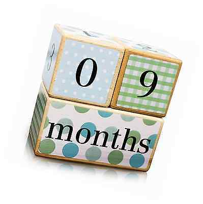 Baby Age Blocks with Weeks / Months / Years / Grade - Collectible Safe Non Toxic