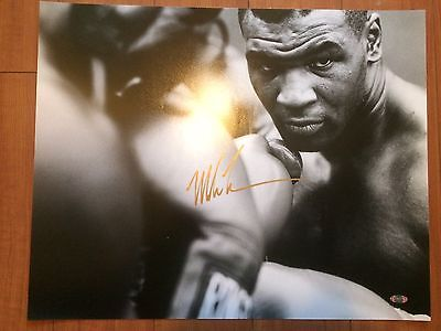 Iron Mike Tyson 16 x 20 Signed Autograph Boxing UFC MMA Conor Steiner COA