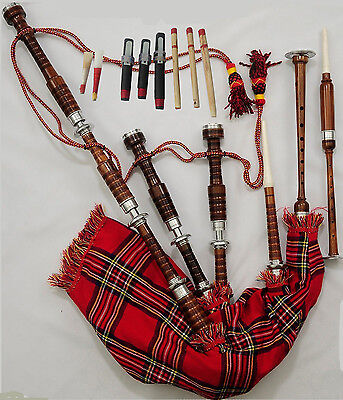 Great Highland Rose Wood Bagpipe Red Color Silver Mounts Plain/Gaita Bagpipe