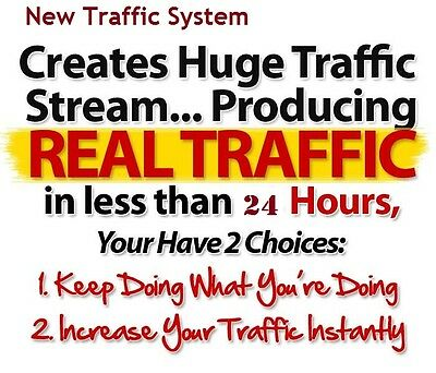 Instant Targeted Top Tier Website Traffic. 80-100 Clicks a Day Full 20 Days