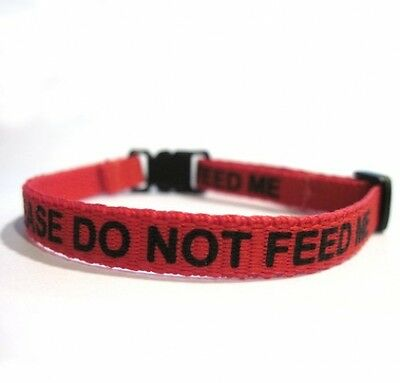 Please Do Not Feed Me Collar Red