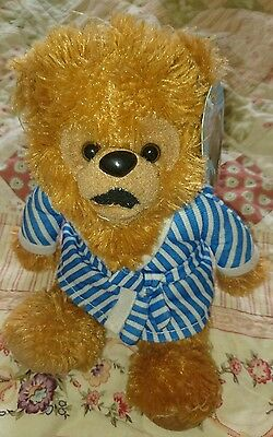 RAINBOW Bungle wearing dressing gown stuffed soft plush toy