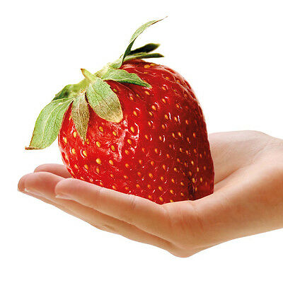 200 seeds-Giant Red Strawberry Seeds, Garden Fruit Plant, Rare And Delicious 133