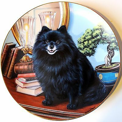 Pomeranian Lovers! Limited Edition Porcelain Collector Plate