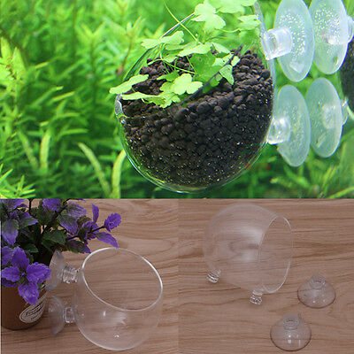 CO2 Glass Bubble Aquarium Water Grass Red Worms Food Cup Fish Feeder Landscape