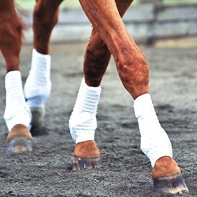 EQUILIBRIUM STRETCH & FLEX TRAINING WRAP horses pony breathable