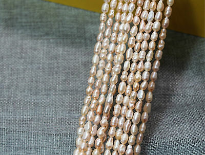 """100% Natural 5-6mm Freshwater Pearl Jewelry Loose Gemstone Beads 14"""" champagne"""