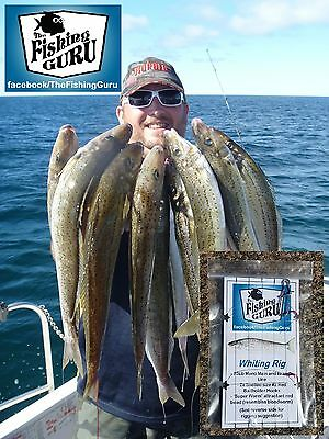 QUALITY WHITING RIG - Paternoster 20Lb #2 Bloodworm Hooks - Hand Made in SA!!
