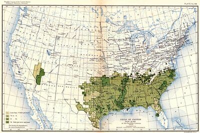 USA. Yield of cotton per acre at the twelfth census  1900 old antique map