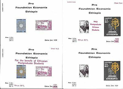 Ethiopia Pro Foundation Economia 8 Sheets