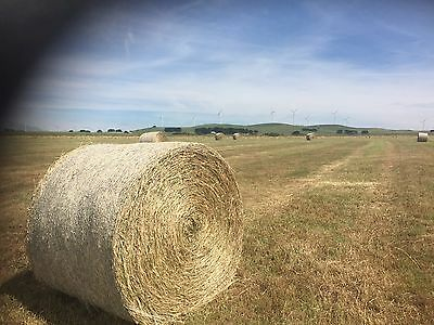 PASTURE HAY ROUND BALES 5x4 Top Quality New Seasons