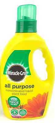 Miracle-Gro All Purpose Concentrated Liquid Plant Food Bottle, 1 L x3