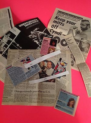 Vintage Cyndi Lauper Articles & Clippings