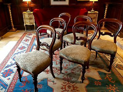 Fabulous Antique Dining Chairs Baloon Back Six Victorian Mahogany 19th Century