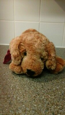 """Large Russ dog with Velvet bow soft toy teddy called """"Toastin"""""""