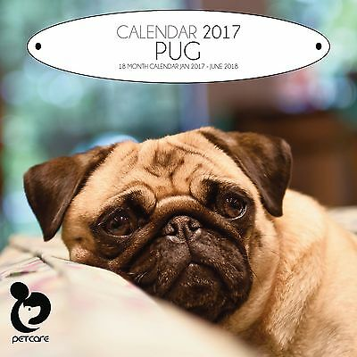 Pug Dog Calendar 2017 with free pull out planner