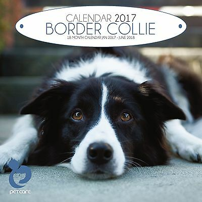 Border Collie Dog Calendar 2017 with free pull out planner