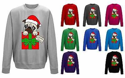 Kids Santa Paws Cute Pug Dog In Santa Hat Christmas Sweater Sweatshirt Jumper