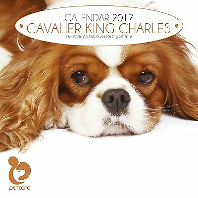 Cavalier King Charles Dog Calendar 2017 with free pull out planner