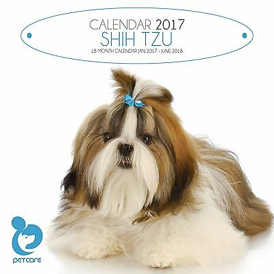 Shih Tzu Dog Calendar 2017 with free pull out planner