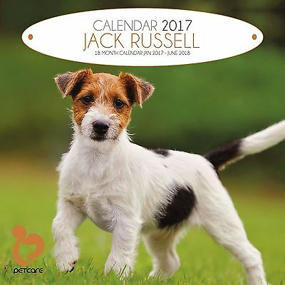 Jack Russell Dog Calendar 2017 with free pull out planner