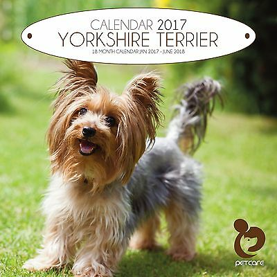 Yorkshire Terrier Dog Calendar 2017 with free pull out planner