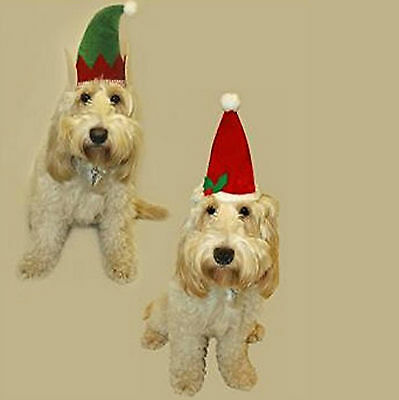 Dog's Felt Festive Christmas Xmas Elf & Santa Hat w/ Holly For Pets (Pack of 2)