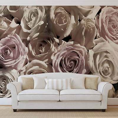 WALL MURAL PHOTO WALLPAPER XXL Roses (1625WS)