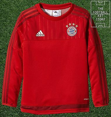 Bayern Munich Sweater -  Official adidas Boys Football Training Top - All Sizes