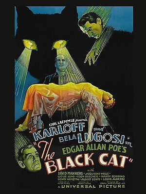 """The Black Cat 16"""" x 12"""" Reproduction Movie Poster Photograph"""