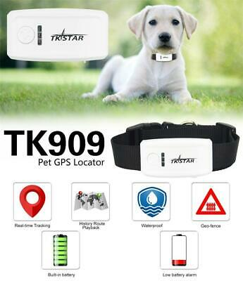Mini Pet GPS Tracker TKSTAR tk909 for dog cat cow,realtime app/web online,No box