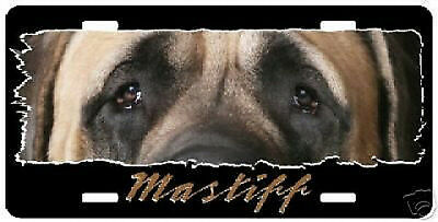 """Mastiff  """" The Eyes Have It """"  License Plate"""