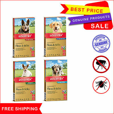 Advantix for Dogs All Sizes 3 Pipettes Flea and Tick Control Treatment