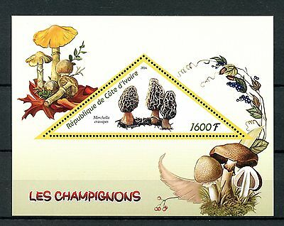 Ivory Coast 2016 MNH Mushrooms 1v S/S Fungi Morchella Stamps