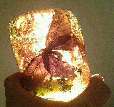 Large Butterfly In Amber Style Resin