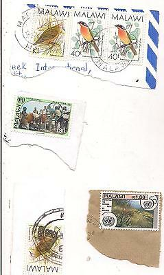 6 MALAWI stamps on paper.
