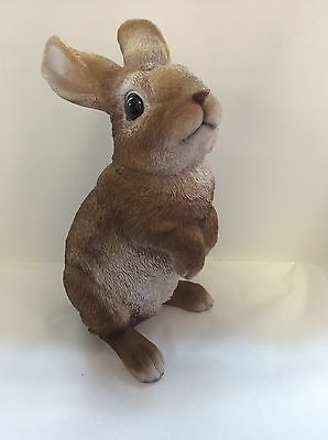 Lookout Rabbit  Real Life Resin Ornament by Vivid Arts