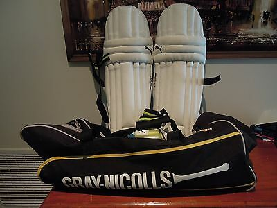 Gray Nicolls Cricket Bag Puma Calibre Youth Pads Plus Gloves