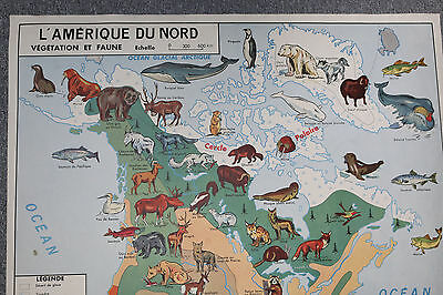 Vintage French School Poster Map NORTH AMERICA USA / ASIE MEXIQUE WORLD FRANCE