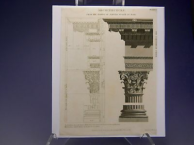 *lovely Original Antique Architectural Engraving Of The Corinthian Order*