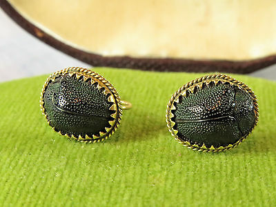 Beautiful Victorian Egyptian Revival 9ct Gold Scarab Beetle Earrings