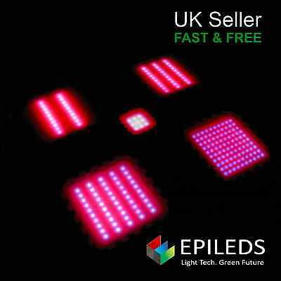 Epileds High Power Full Spectrum Plant Grow LEDs Red Blue combo Magenta Pink
