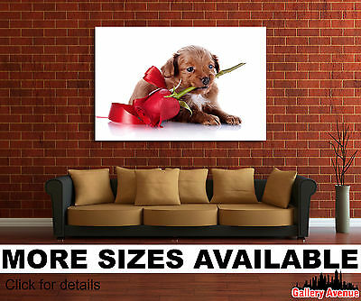 Wall Art Canvas Picture Print - Cute Little Puppy Dog and Rose 3.2